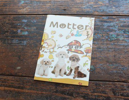 motter カタログ